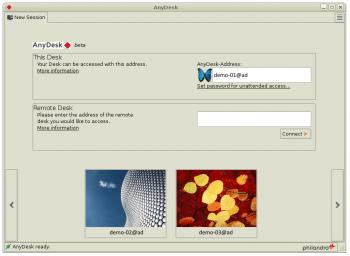 Angeblich schneller als andere: AnyDesk Remote-Desktop-Software.