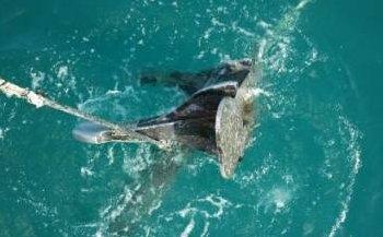 Diesen Anker fischte das Reparaturschiff rund 50 Kilometer vor der Küste Dubais aus dem Wasser.