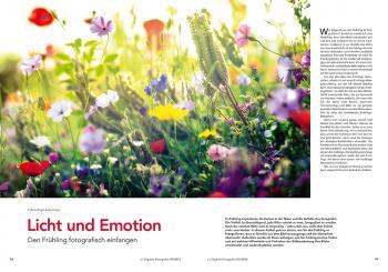 Licht und Emotion: Autor Ralph Tobias Ackermann zeigt, wie Sie den Frühling fotografisch einfangen.