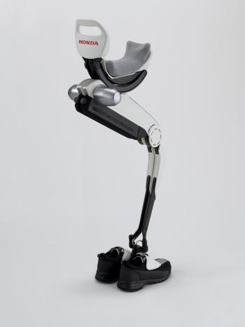 Walking Assist Device With Bodyweight Support System