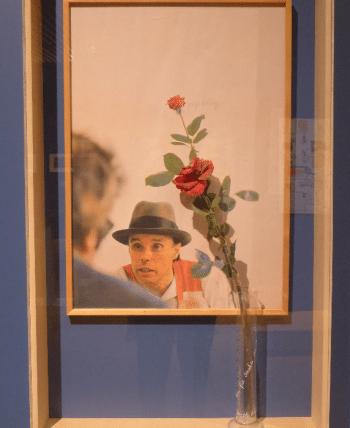 Joseph Beuys, Eine Rose für die direkte Demokratie