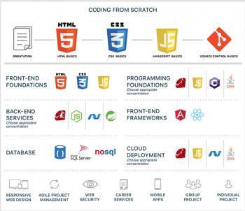 Das Curriculum für Anwendungsentwickler. Im Mittelpunkt stehen Webtechniken.