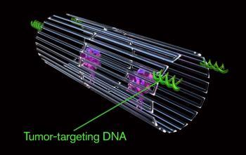 Nanoroboter schnüren Krebszellen ab