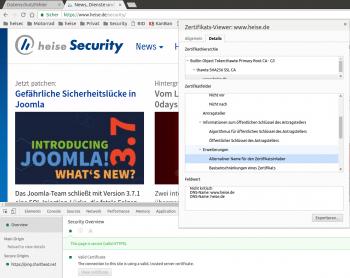"""Die SANs des Zertifikats finden sich nur in den Angaben zu """"Details""""."""