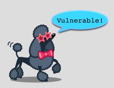 Poodle-Test