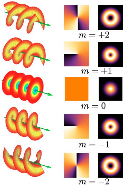 Light Orbital Angular Momentum