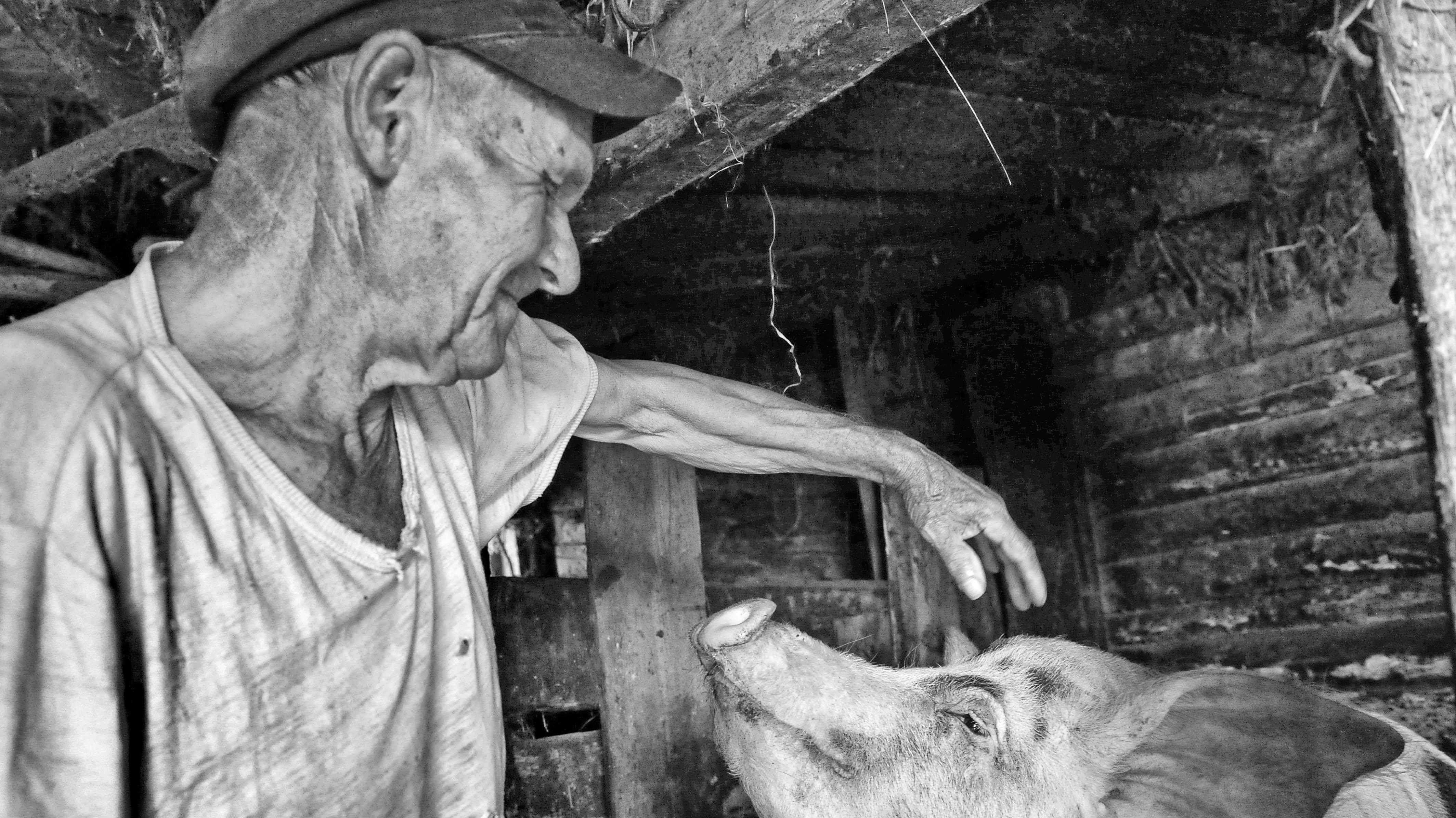 30 Jahre nach Tschernobyl: Das ganz normale Leben im Sperrgebiet
