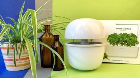 TechStage | Smarte Indoor-Gärten: Gemüse & Kräuter im Haus züchten