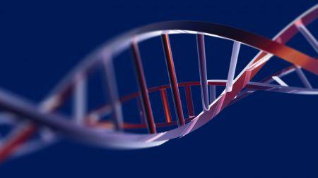 Gensequenzierung: 64 Genome sollen globale genetische Vielfalt abbilden