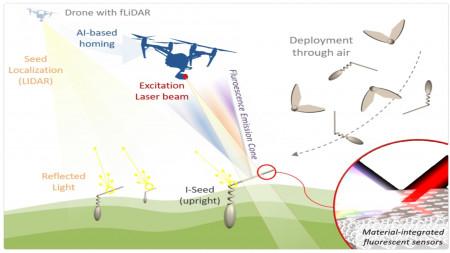Acker-Analyse mit biologisch abbaubaren Mini-Robotern