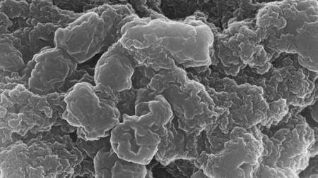 Pilzartiges Kunstpigment filtert Giftstoffe