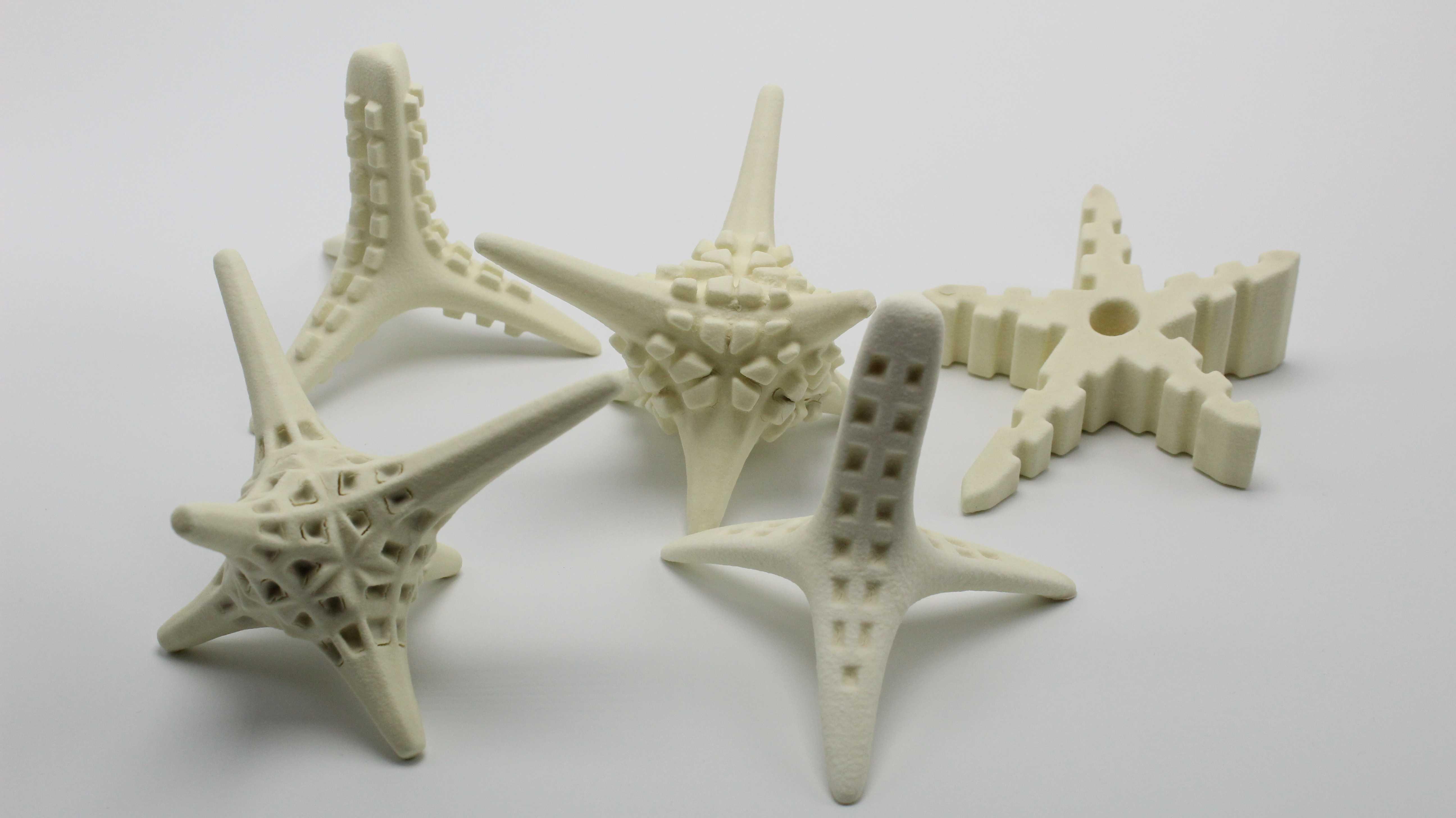 Korallensterben: Besiedlungsstrukturen aus dem 3D-Drucker sollen bei der Aufforstung helfen