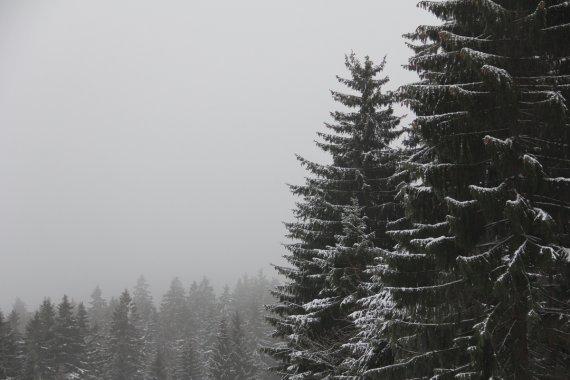 Wintergruß von Enigma1505