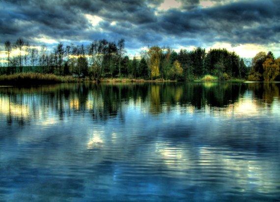 Waldsee im November von Tony deKaro