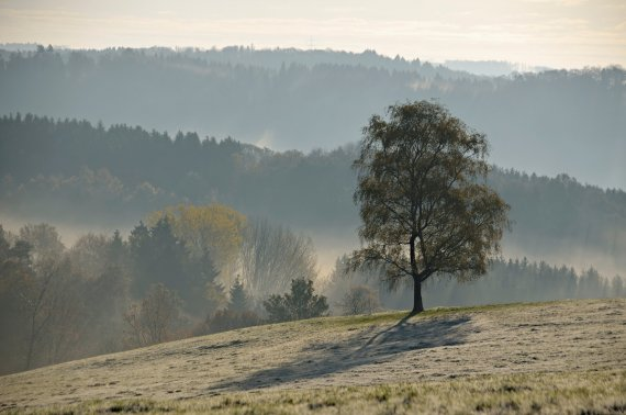 Herbstnebel im Bergischen von AndreasvomLand