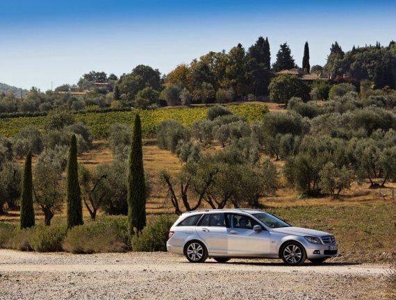 Olivenhain von midcab