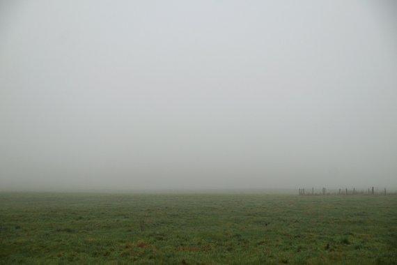 Nebel II von dh_zelmen