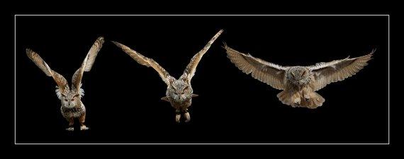 Starten - Abheben - Fliegen von Gerd1