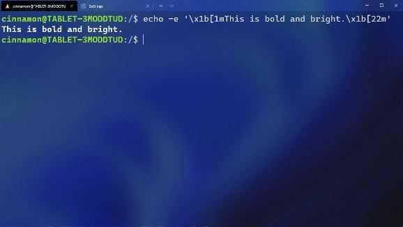 Windows Terminal Preview 1.11: Texthervorhebung im Terminal