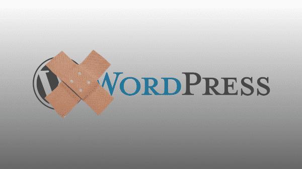 WordPress entledigt sich von einem Dutzend Sicherheitslücken
