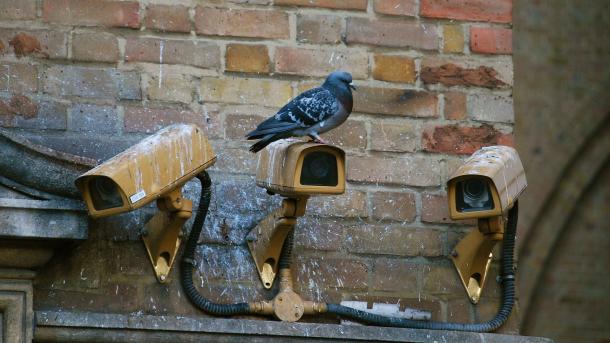 Drei Kameras mit einer Luftratte