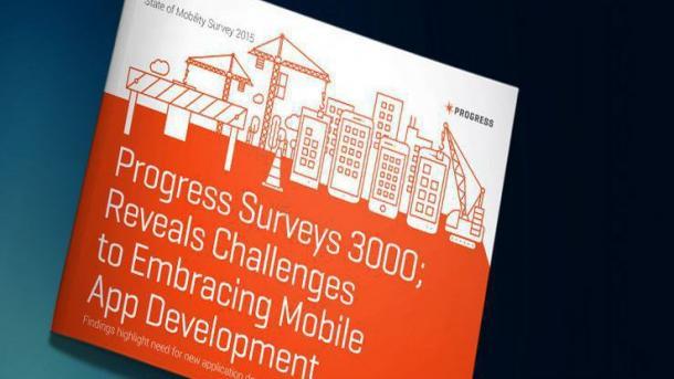 Studie: Begrenzte Ressourcen und sich ständig ändernde Techniken behindern App-Entwicklung