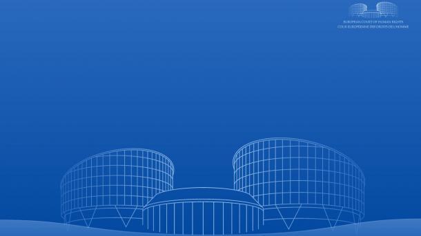 Gerichtshof für Menschenrechte spricht News-Portal von Haftung für Nutzerkommentare frei