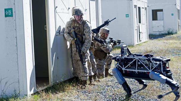 Boston Dynamics : Google stellt Roboter-Entwickler wohl zum Verkauf