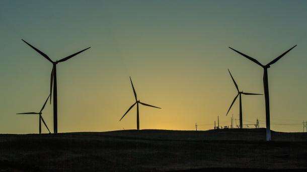 Weltweite Energiewende: Erneuerbare Energien überholen Kohle