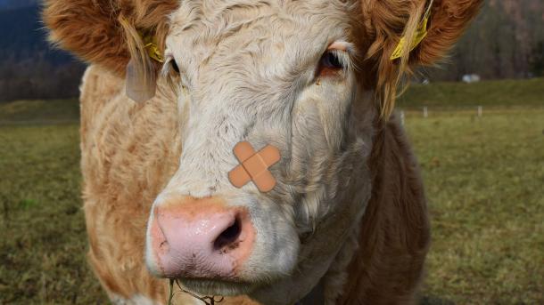Huge Dirty Cow: Ein Patch für den Linux-Patch