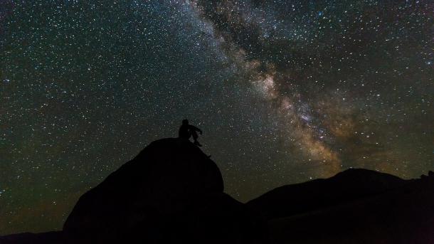 Citizen Science: Das begehrte Wissen der Hobby-Forscher
