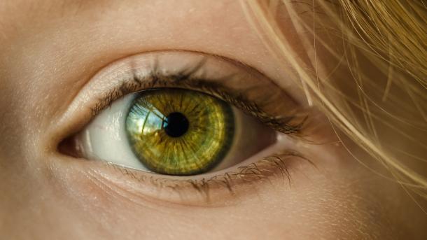 Google KI-Algorithmus kann Herzerkrankungen durch Augen-Diagnose vorhersagen