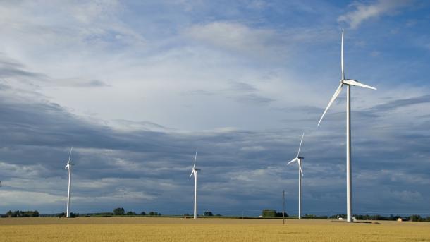SuedLink-Stromtrassenbau: Bürgerinitiativen formieren sich zum Widerstand