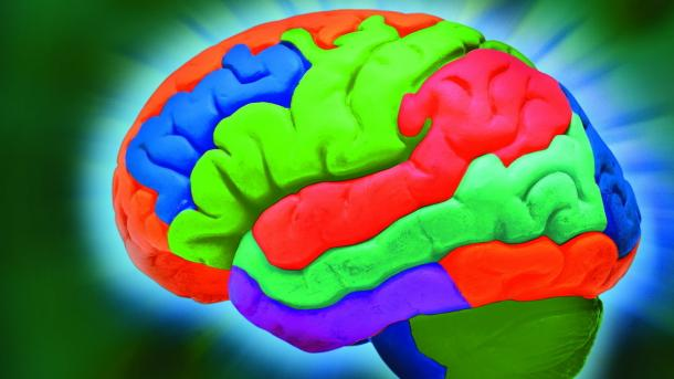 Khronos veröffentlicht Aaustauschfomat für neuronale Netze