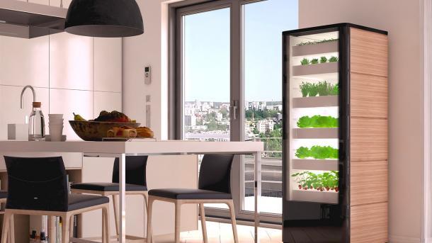 Vertical Farming: Start-ups wollen Hightech-Gewächshaus in die Einbauküche bringen