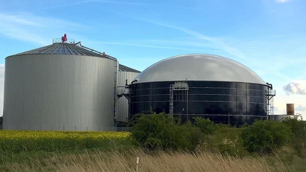 Effizienzsteigerung bei Biogasanlagen: Ultraschall und Plasma regen Gär-Bakterien an