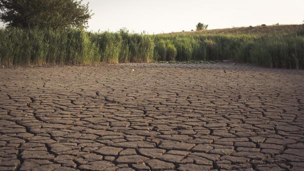 Weltweiter Klimatrend bleibt: 2018 wird wohl viertheißestes Jahr