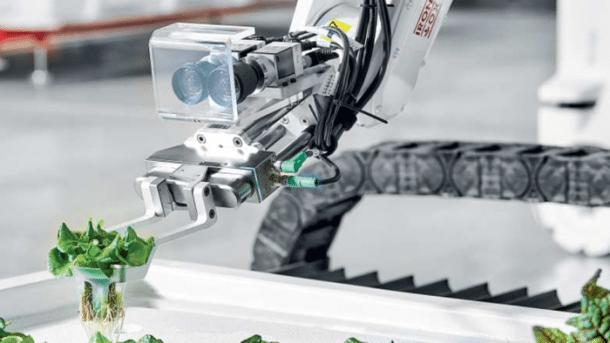 Die Roboter-Gärtner