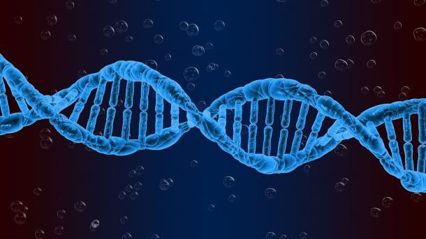 Spurensuche im Kleinen – DNA-Analyse hilft bei Verbrechensaufklärung
