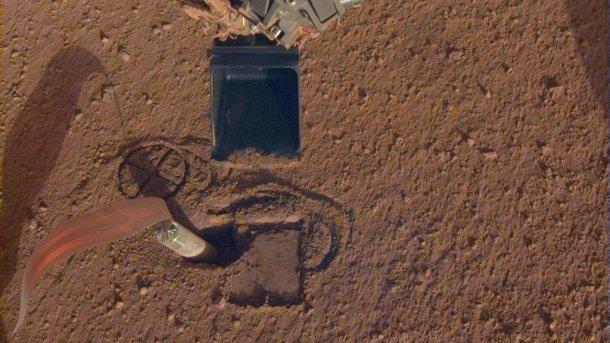 Maulwurf beim Eindringen in den Marsboden