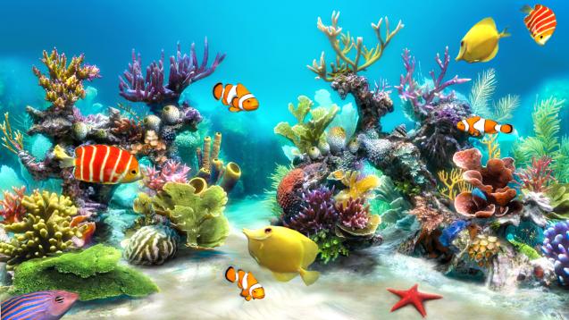 aquarium bildschirmschoner vollversion