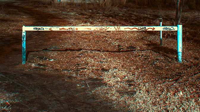 Farbige Infrarotbilder aus dem Raw-Konverter