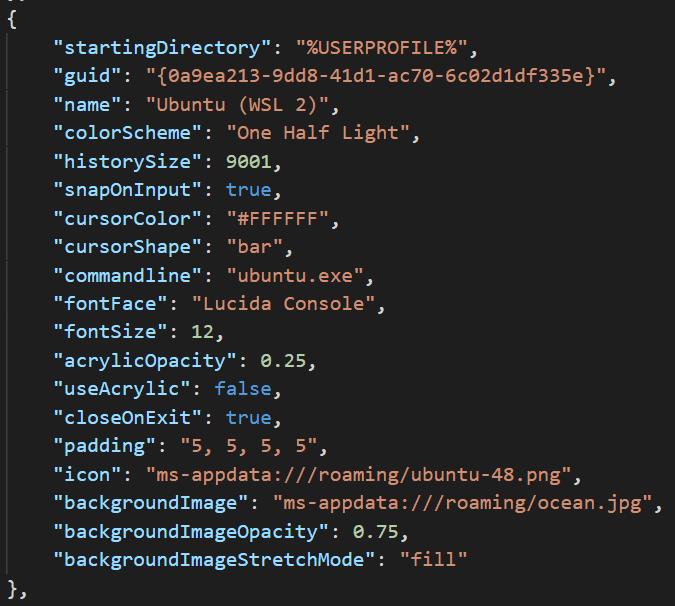 Die Konfigurationsdatei profiles.json bietet viele individuelle Anpassungsmöglichkeiten.