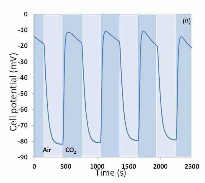 Strom aus Kohlendioxid