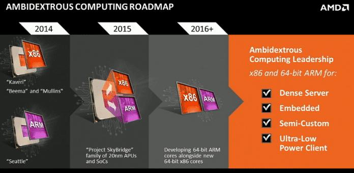 AMD Skybridge Roadmap