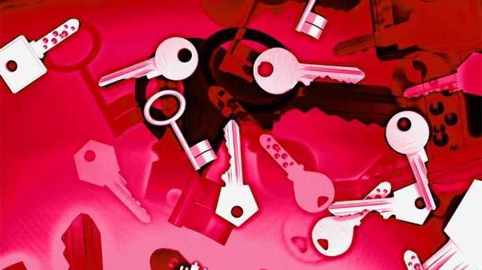Poodle: Experten warnen vor Angriff auf Internet-Verschlüsselung
