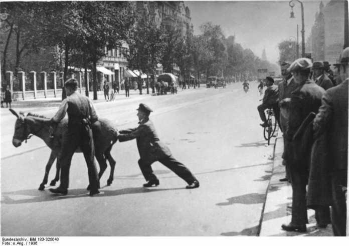 2 Männer versuchen, störrischen Esel über Straße zu führen