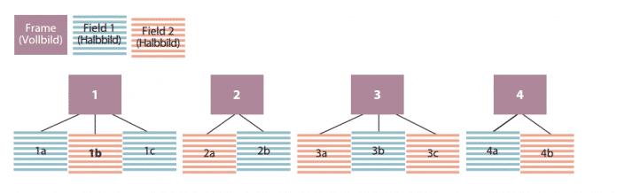Beim 3:2-Pulldown werden aus 24 Vollbildern im Wechsel drei und zwei Halbbilder erzeugt. So entstehen aus zwei Filmbildern jeweils 5 Halbbilder.