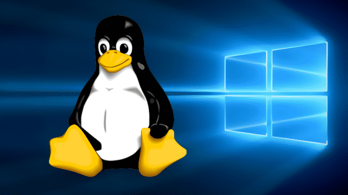 Windows 10 lernt Linux