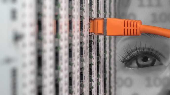 Deutlich mehr individuelle Überwachungen durch Verfassungsschutz und BND